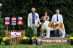 BEST OF BREED - LUMELAVIIN BRILIANT KIND OF HEART